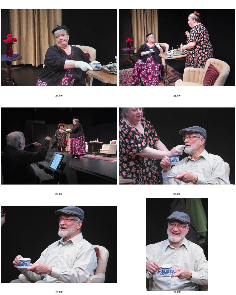 Cascadia Concert Opera presents The Old Maid and the Thief in English #1